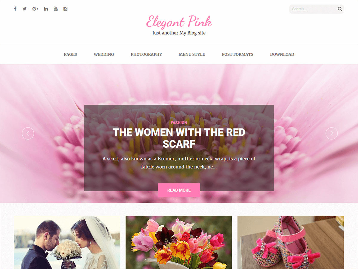 Elegant Pink Download Free Wordpress Theme 5
