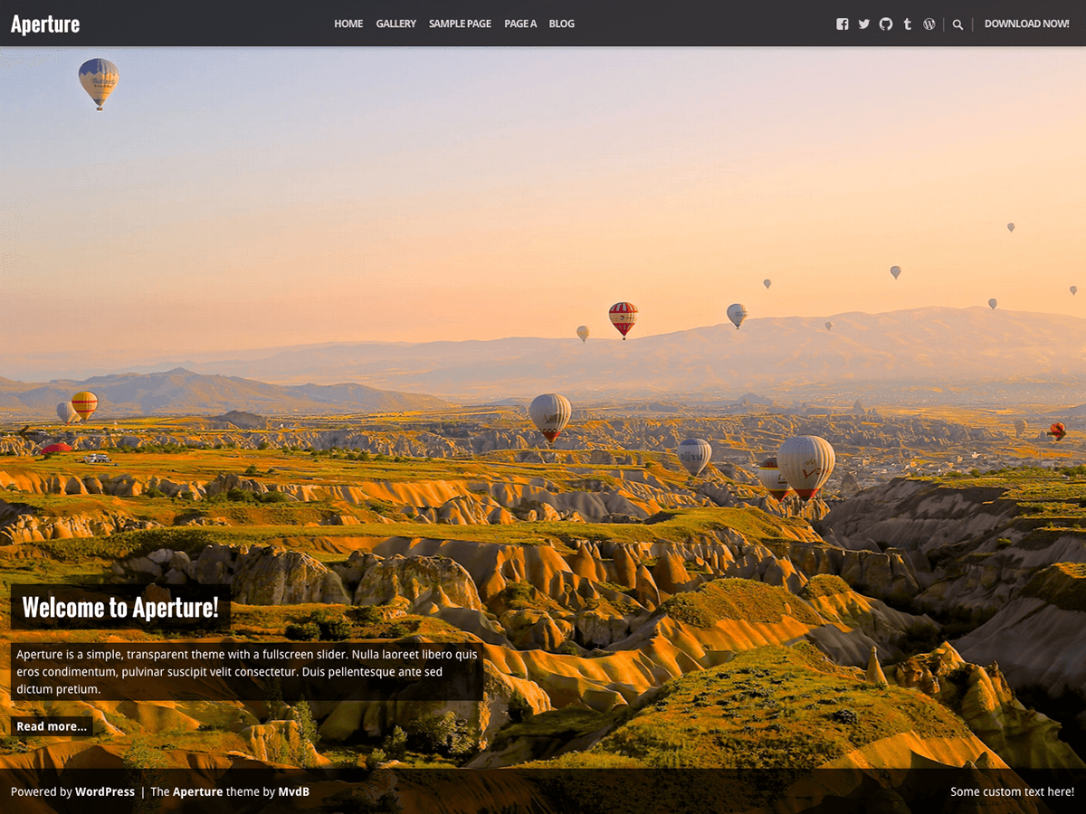 Aperture Download Free Wordpress Theme 1
