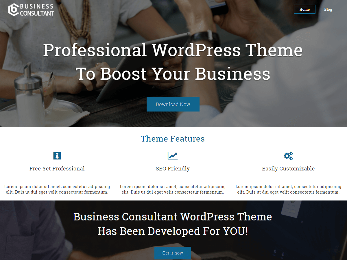 Business Consultant Download Free Wordpress Theme 2