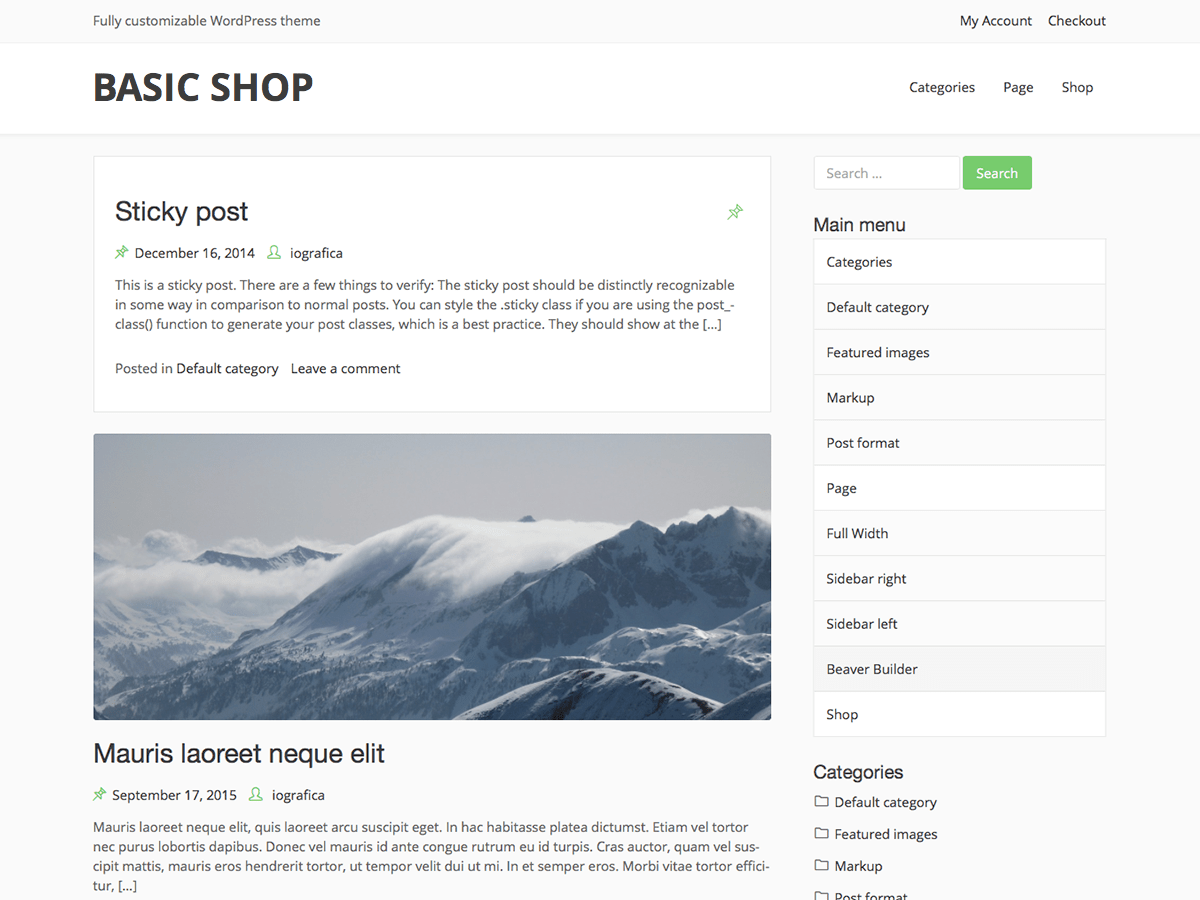 Basic Shop Download Free Wordpress Theme 4