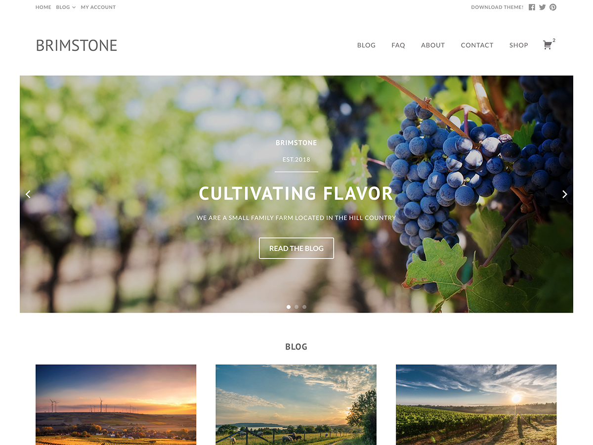 Brimstone Download Free Wordpress Theme 5