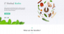 Herbal Lite Download Free WordPress Theme