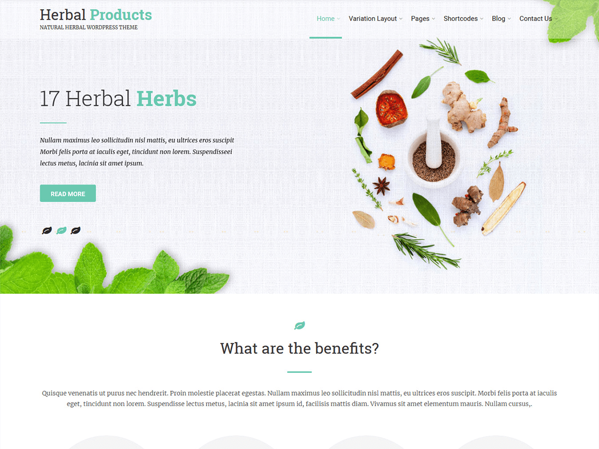Herbal Lite Download Free Wordpress Theme 1