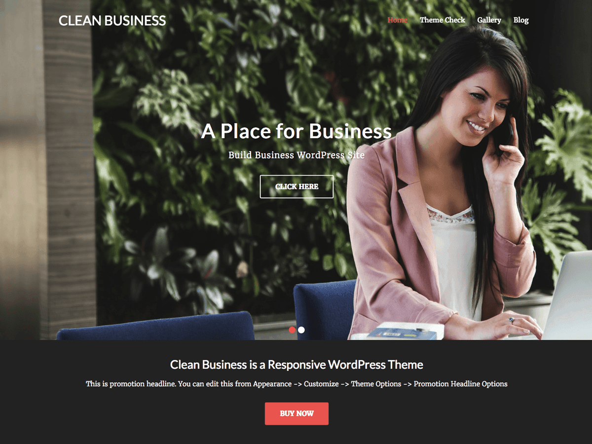 Clean Business Download Free Wordpress Theme 1