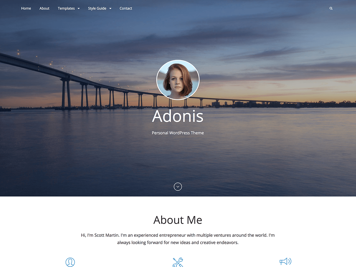Adonis Download Free Wordpress Theme 3