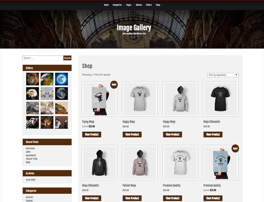 Image Gallery Download Free Wordpress Theme 2