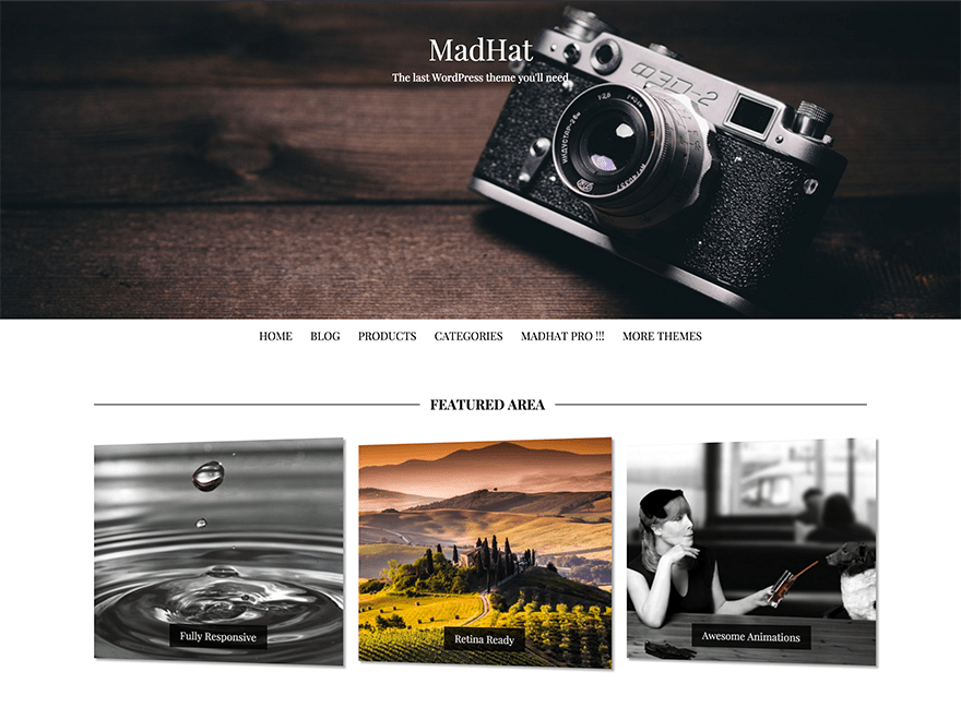 MadHat Download Free Wordpress Theme 4