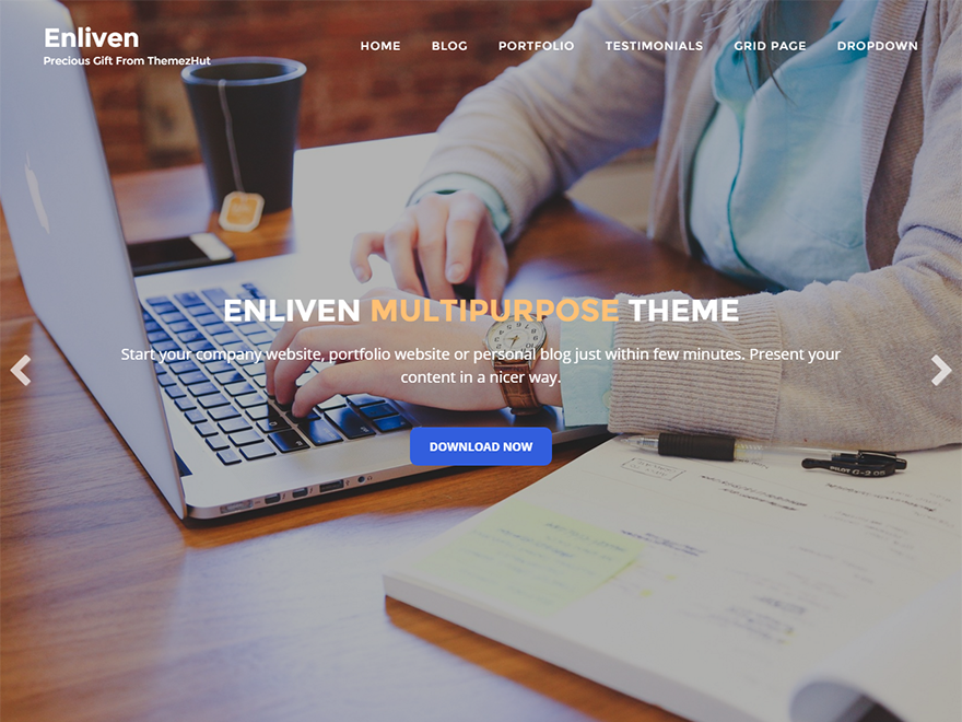 Enliven Download Free Wordpress Theme 1