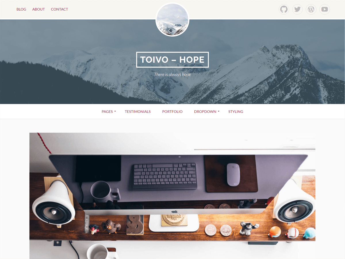 Toivo Lite Download Free Wordpress Theme 1