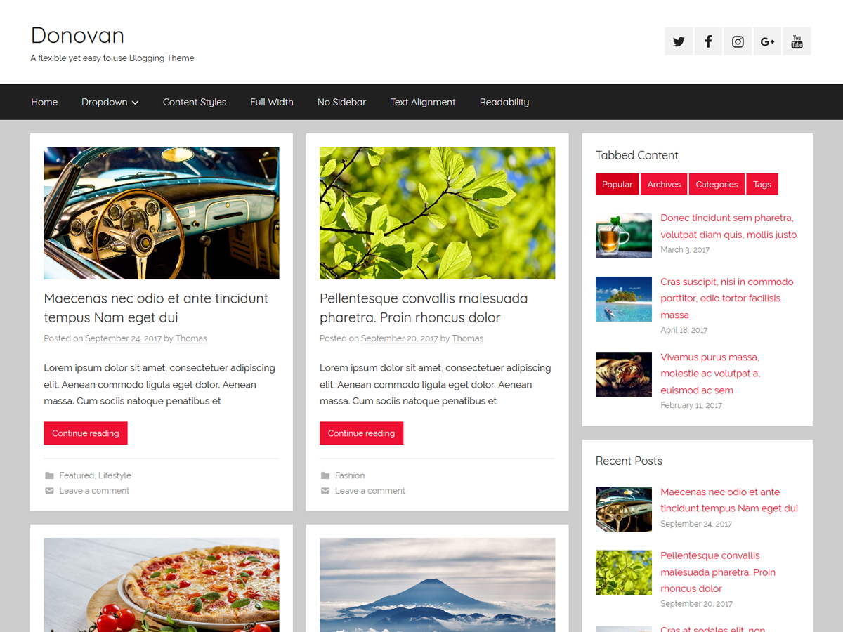 Donovan Download Free Wordpress Theme 4
