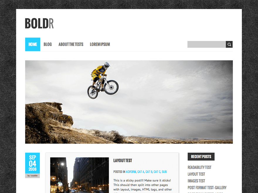 BoldR Lite Download Free Wordpress Theme 4