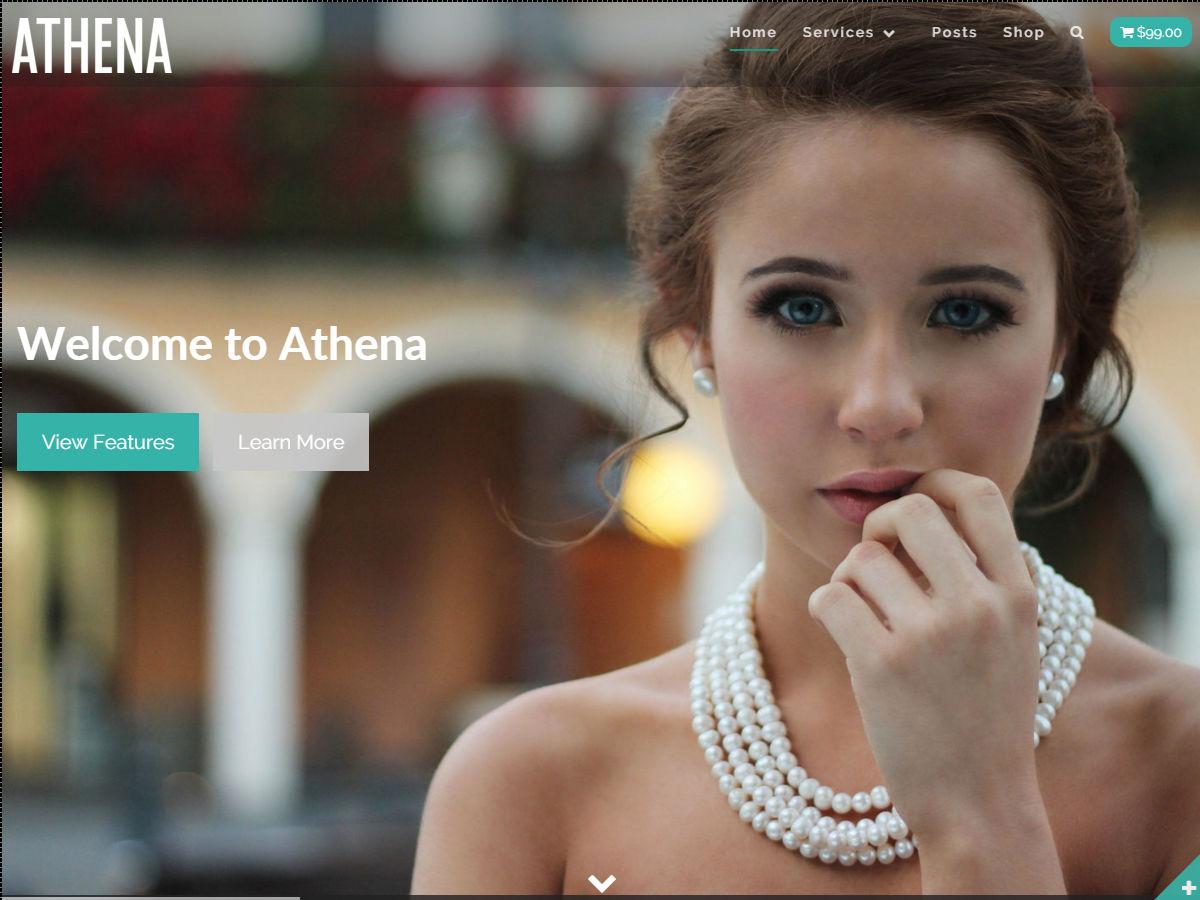 Athena Download Free Wordpress Theme 2