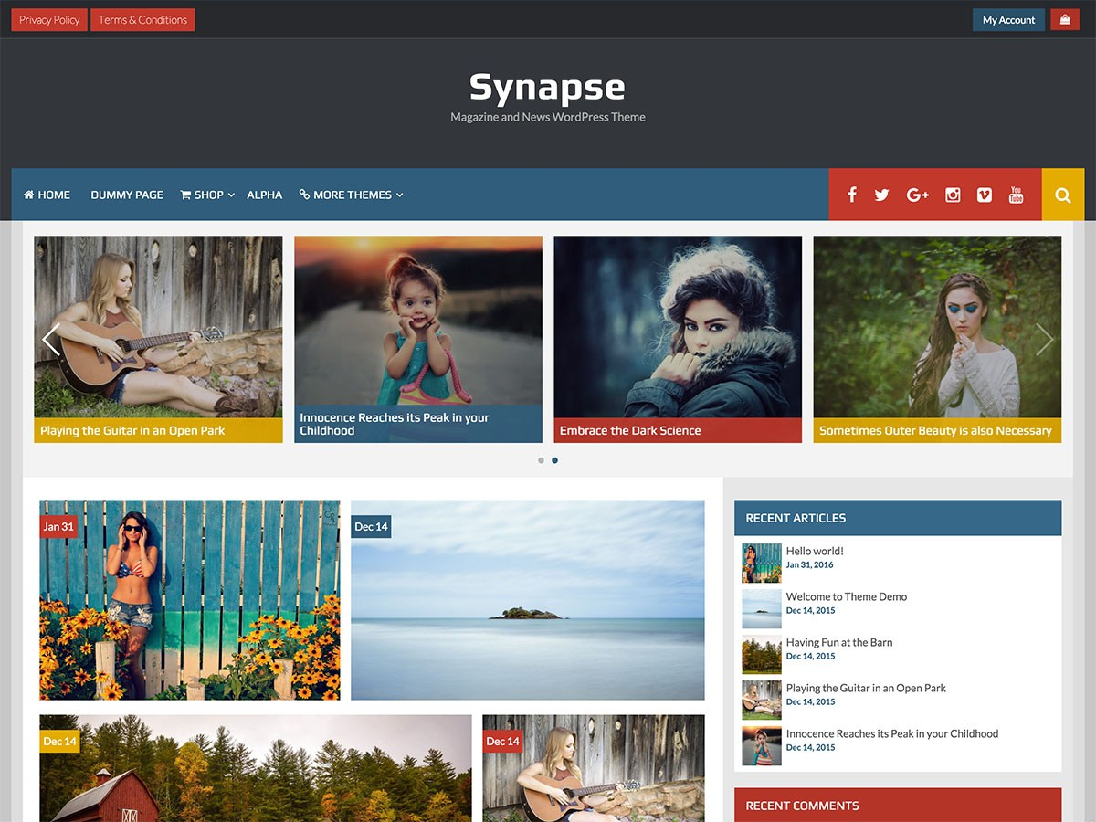 Synapse Download Free Wordpress Theme 2