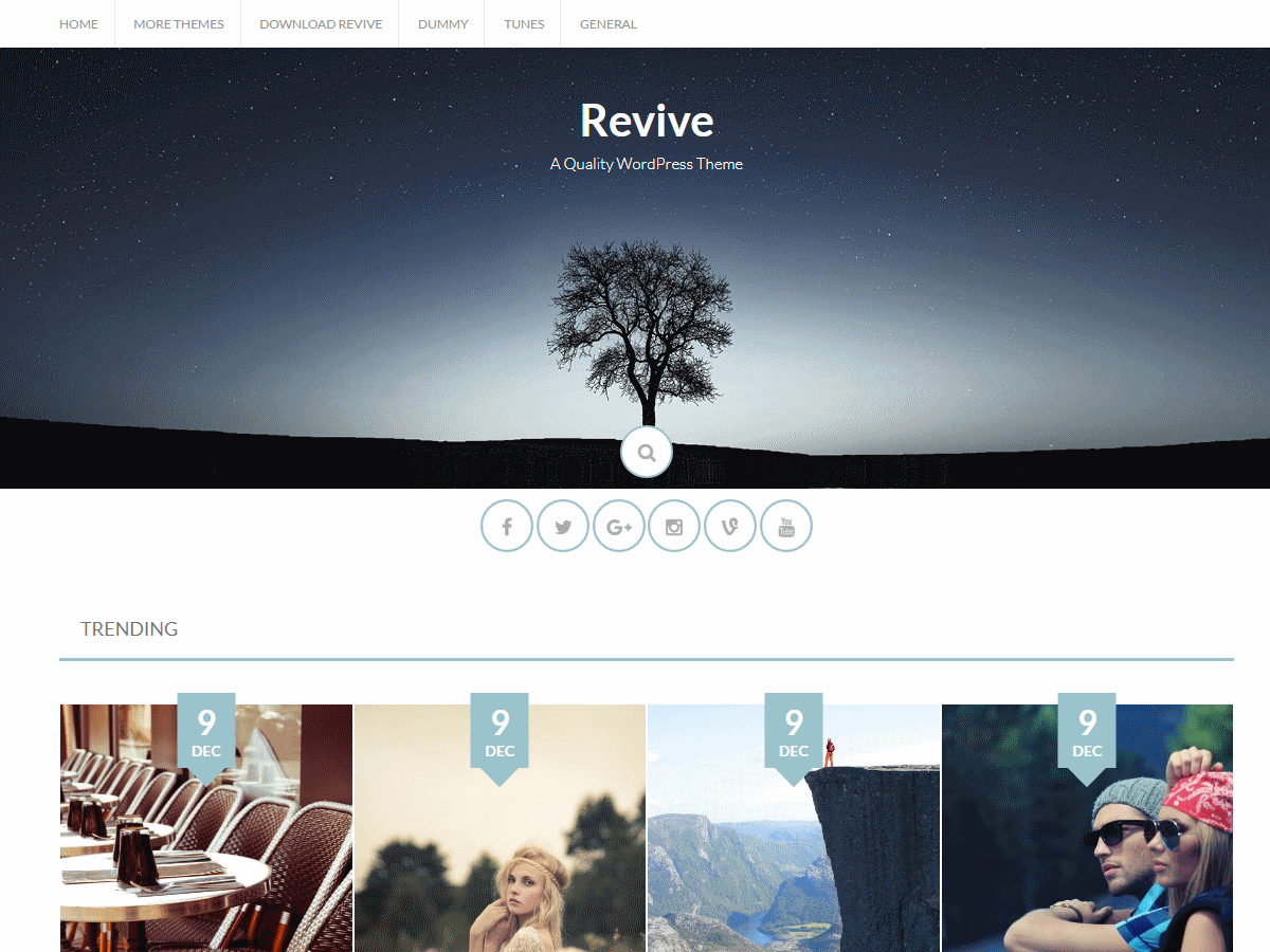 Revive Download Free Wordpress Theme 2