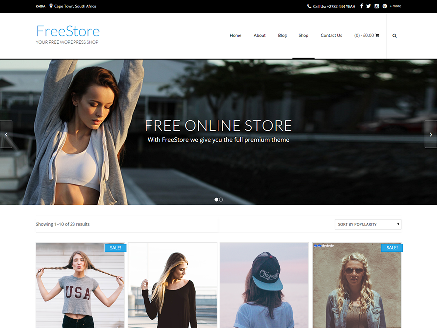 FreeStore Download Free Wordpress Theme 2