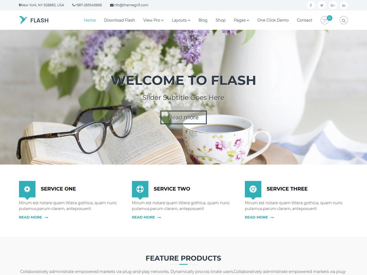 Flash Download Free Wordpress Theme 3