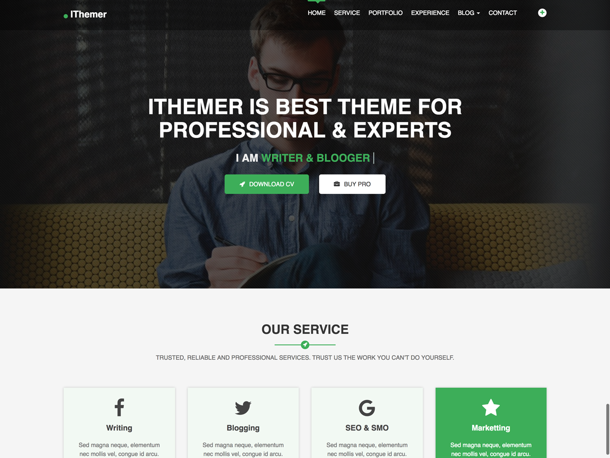 iThemer Download Free Wordpress Theme 2