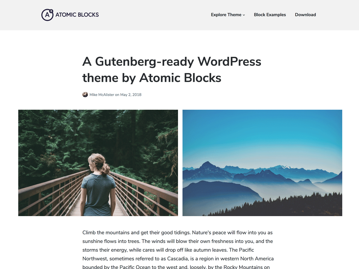Atomic Blocks Download Free Wordpress Theme 1