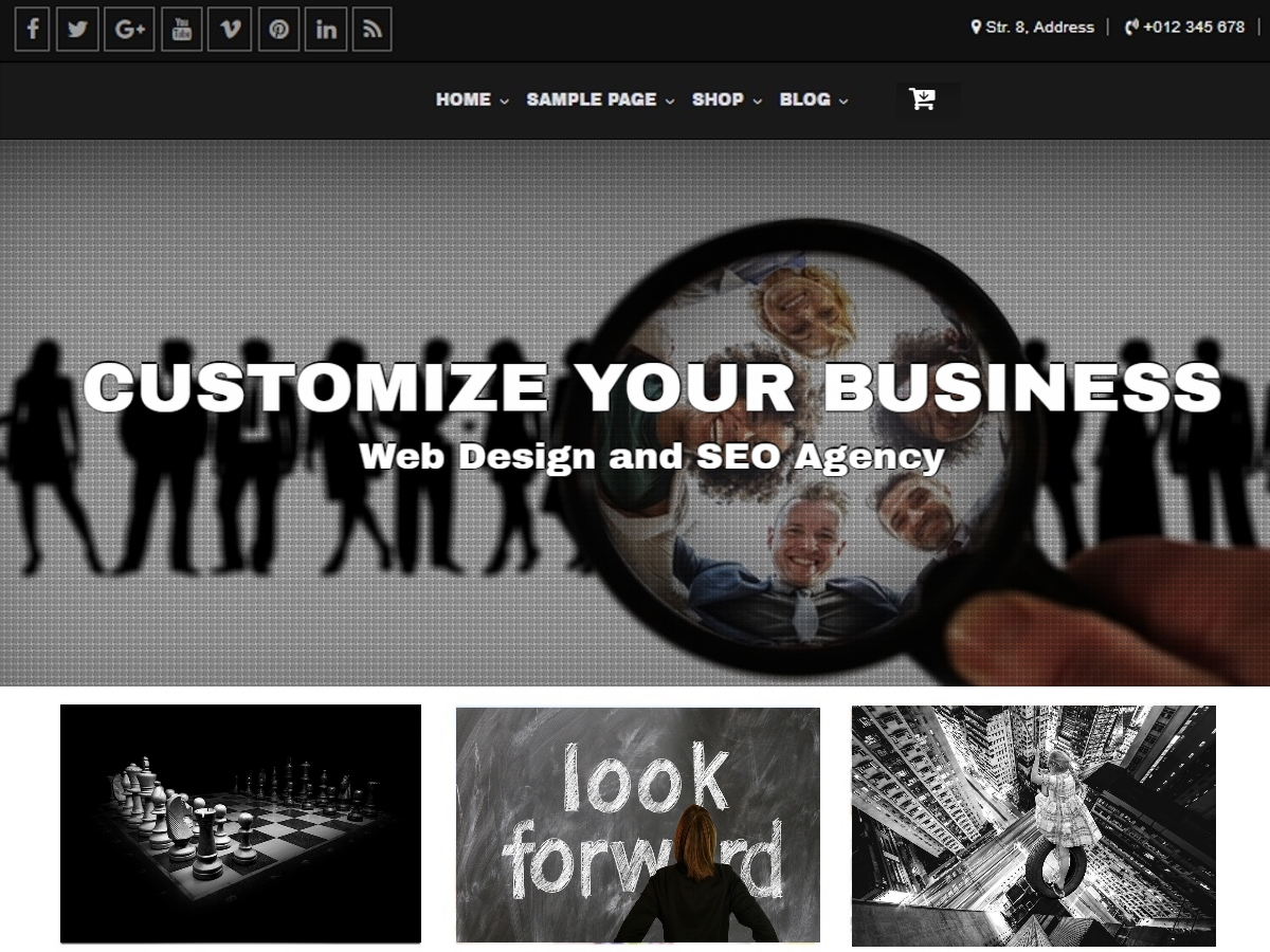 Customize Download Free Wordpress Theme 3