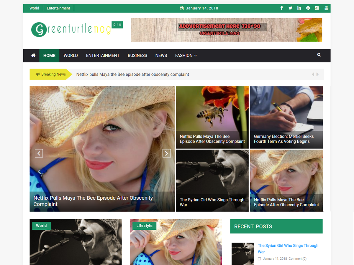 Greenturtle Mag Download Free Wordpress Theme 2