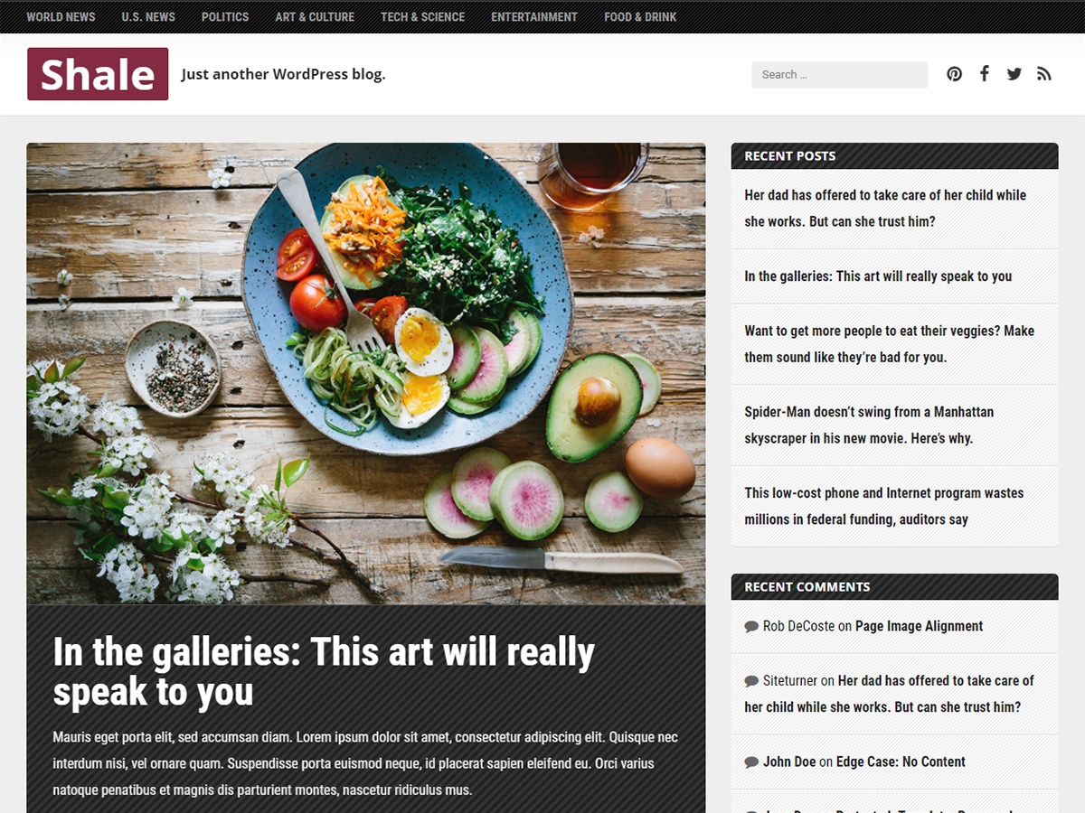 Shale Download Free Wordpress Theme 2
