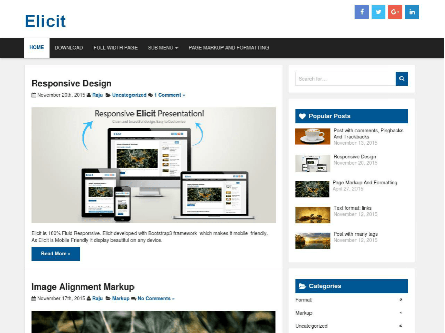 Elicit Download Free Wordpress Theme 1