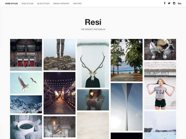 Resi Download Free Wordpress Theme 4