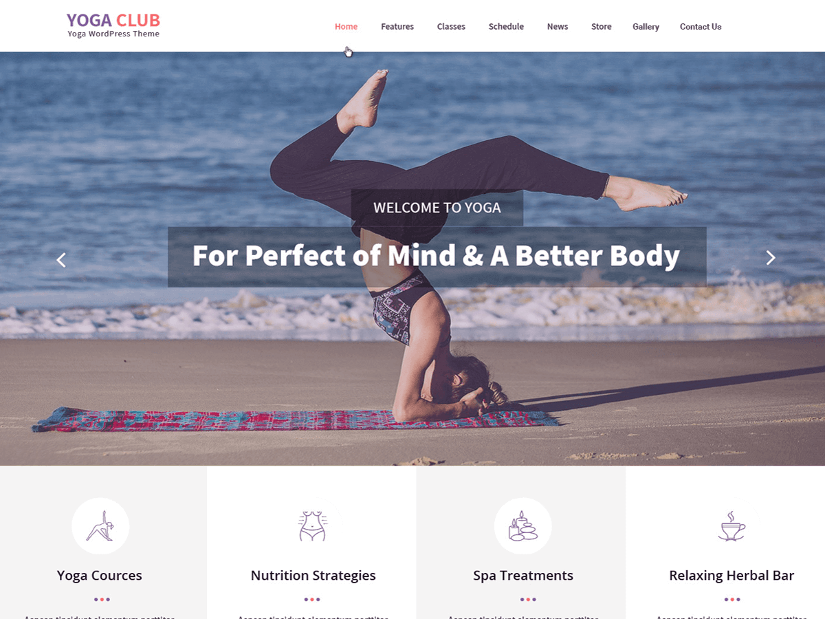 Yogaclub Lite Download Free Wordpress Theme 3
