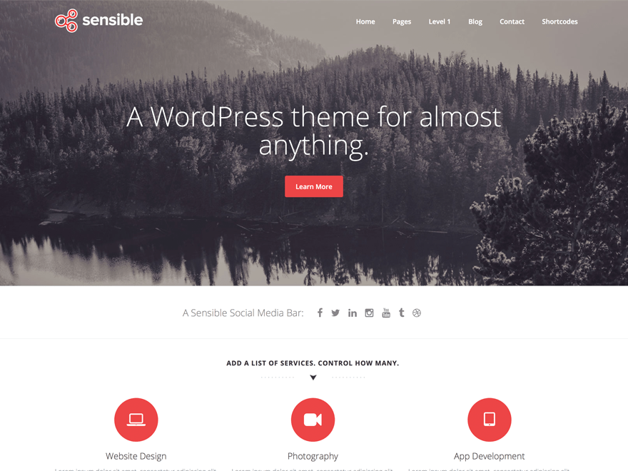 Sensible WP Download Free Wordpress Theme 3