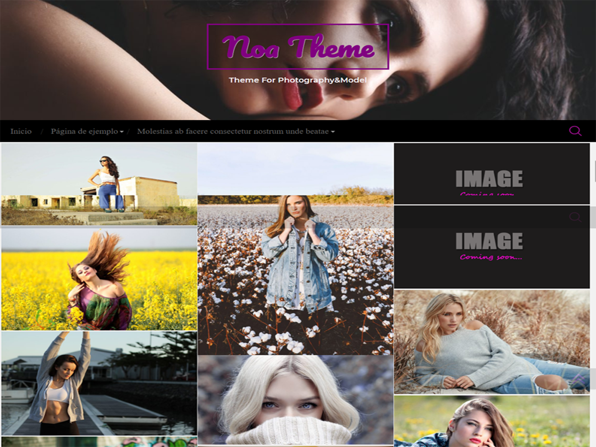 noa Download Free Wordpress Theme 3
