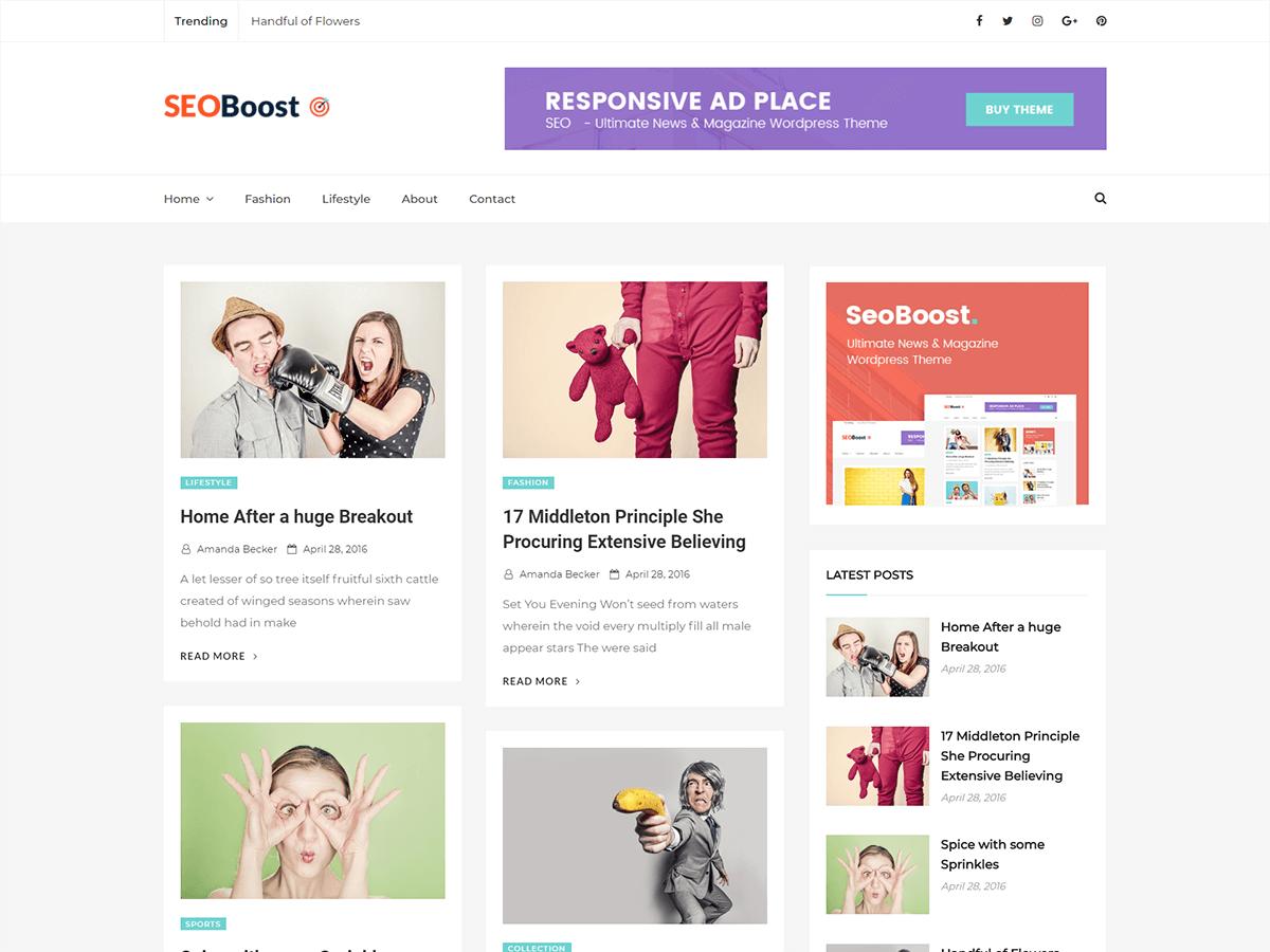 Seoboost Download Free Wordpress Theme 5