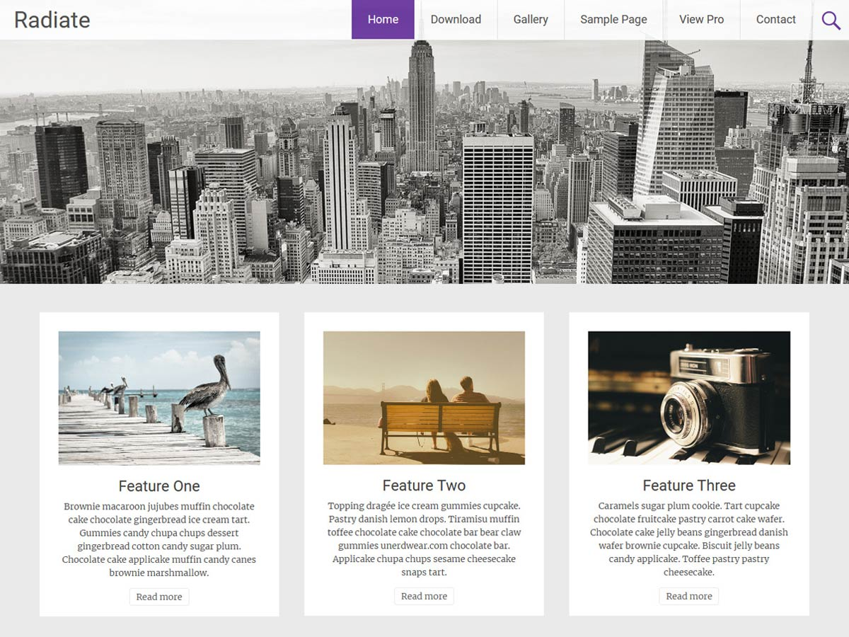 Radiate Download Free Wordpress Theme 5