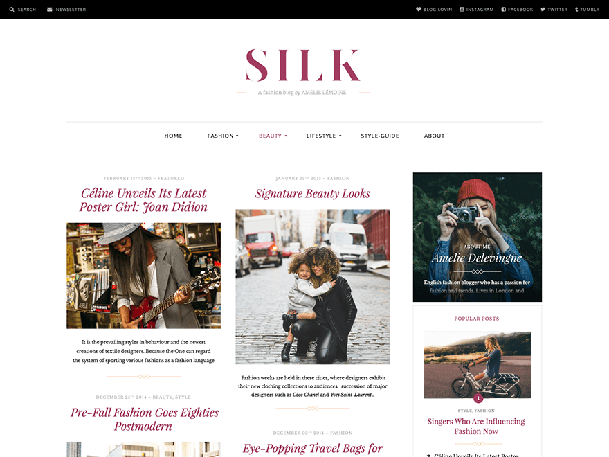 Silk Lite Download Free Wordpress Theme 1