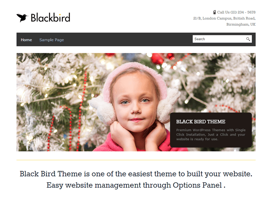 BlackBird Download Free Wordpress Theme 4