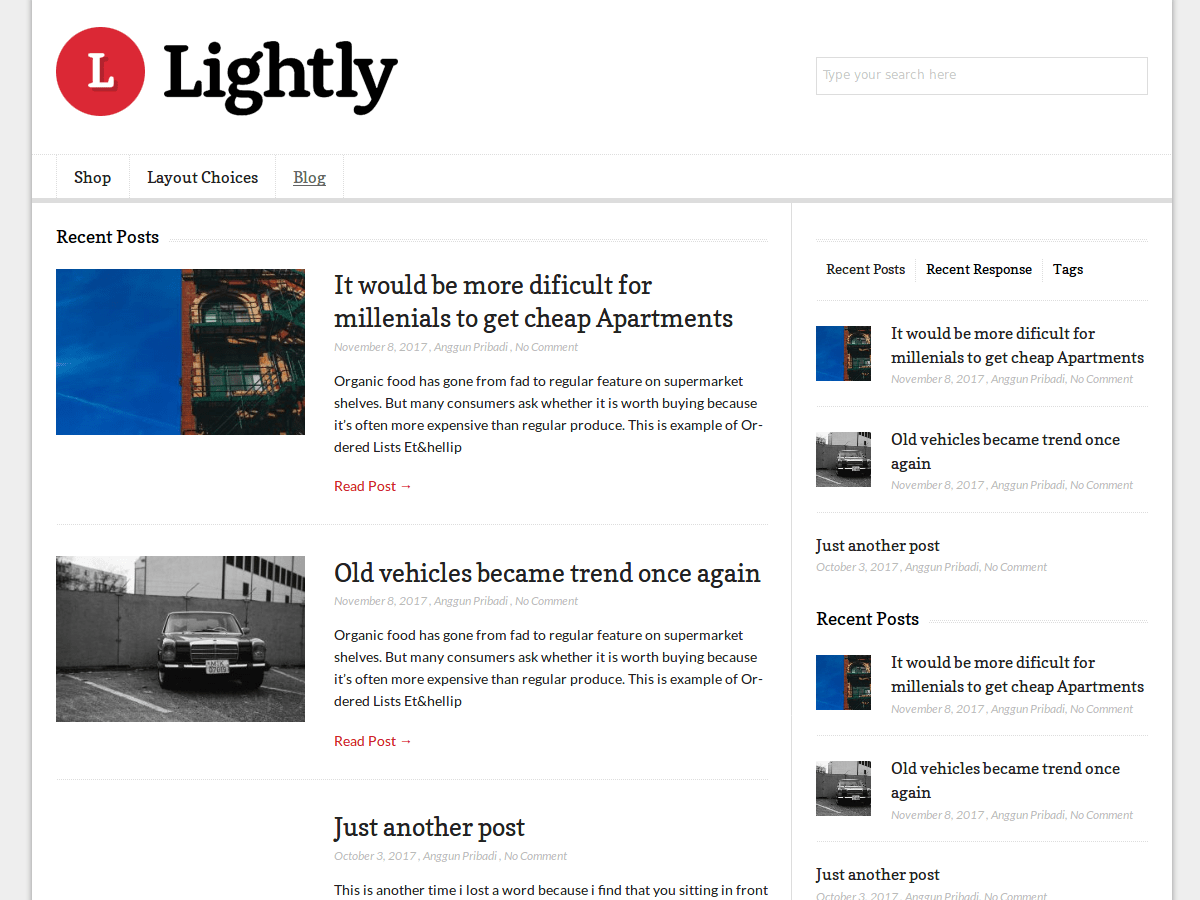 Lightly Download Free Wordpress Theme 2