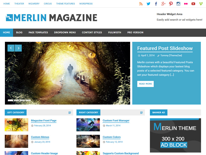 Merlin Download Free Wordpress Theme 1