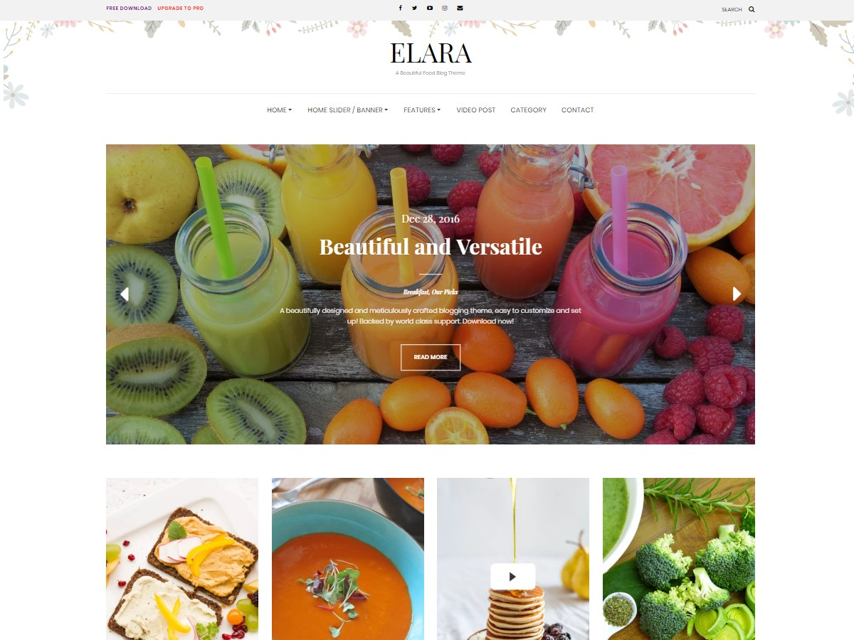 Elara Download Free Wordpress Theme 5