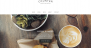 Counter Download Free WordPress Theme