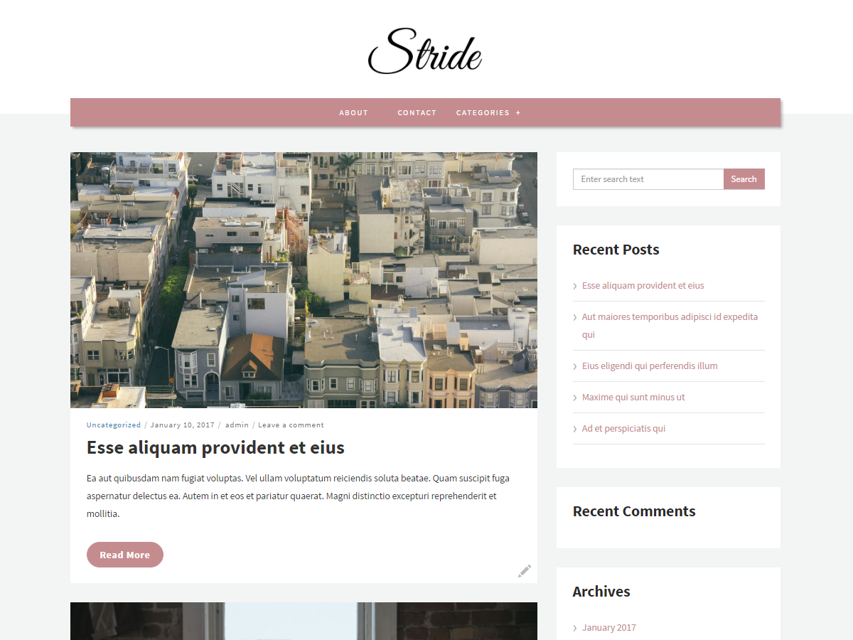 Stride lite Download Free Wordpress Theme 5