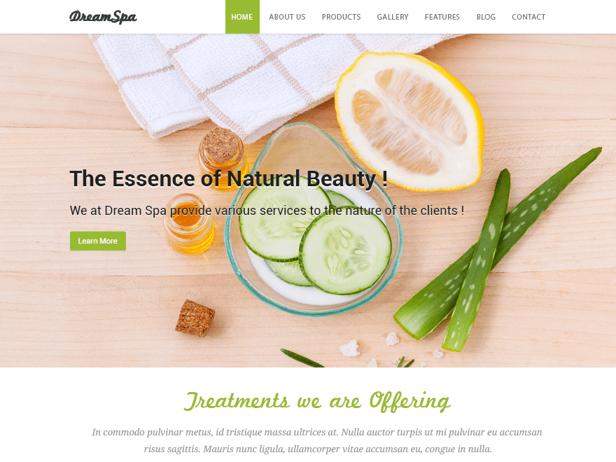 Dream Spa Download Free Wordpress Theme 2
