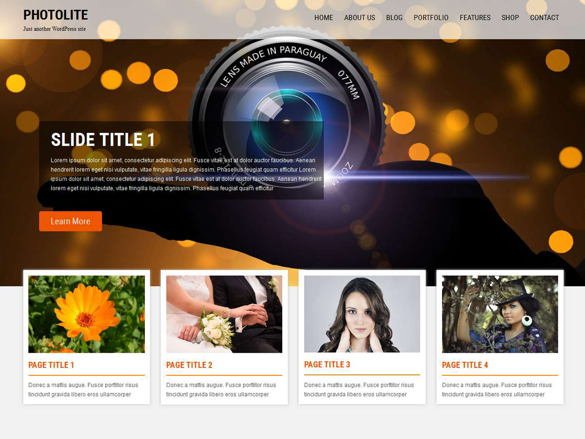 Photolite Download Free Wordpress Theme 1