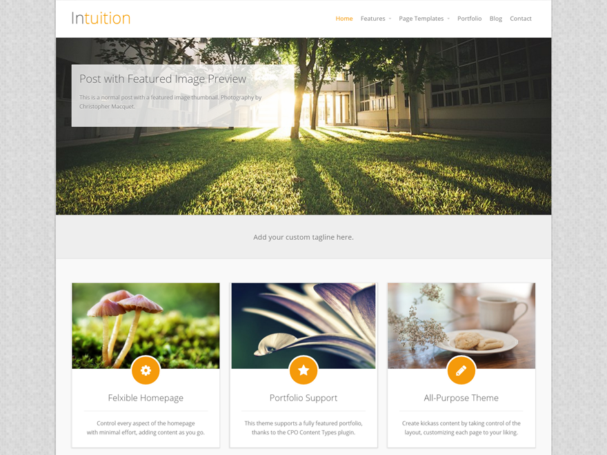 Intuition Download Free Wordpress Theme 1