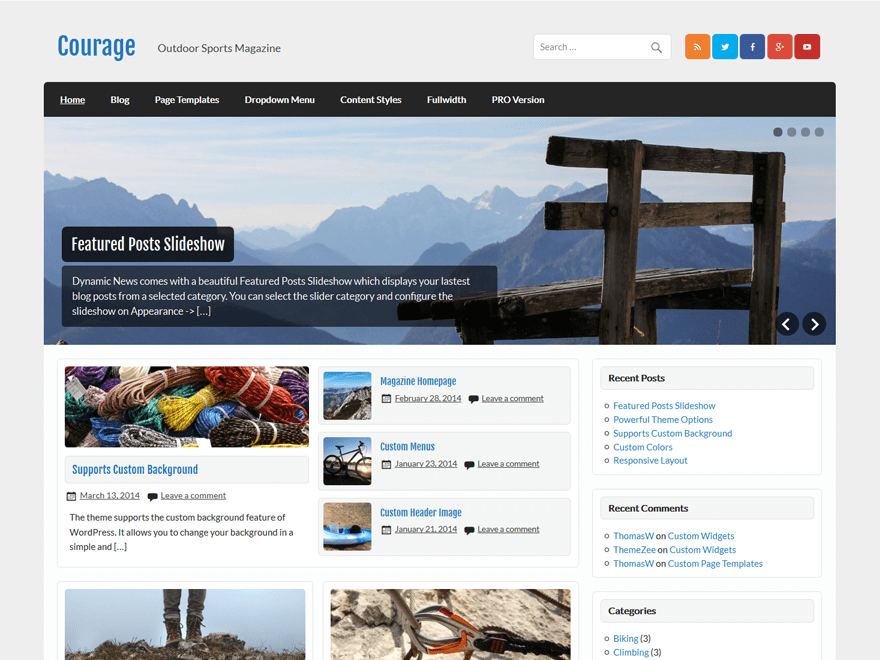 Courage Download Free Wordpress Theme 4