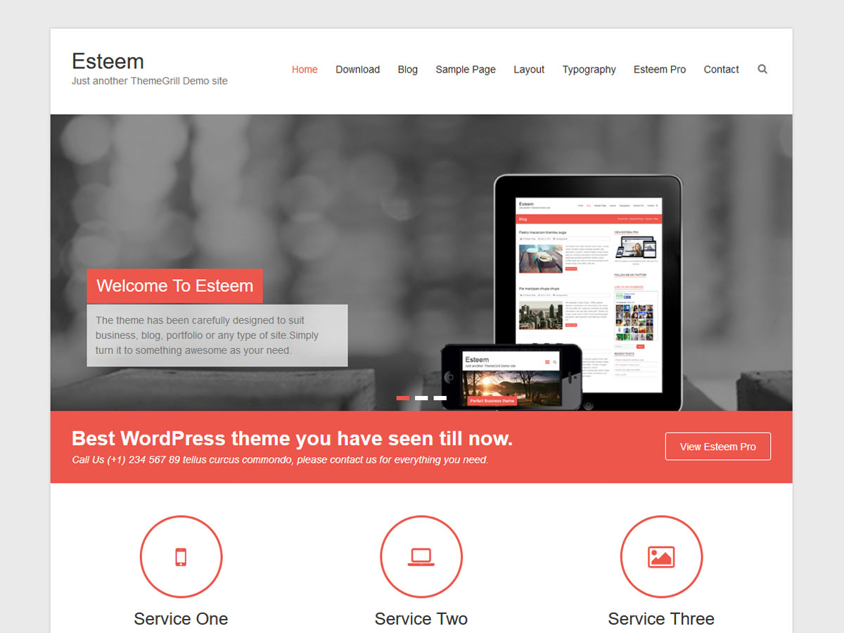 Esteem Download Free Wordpress Theme 1
