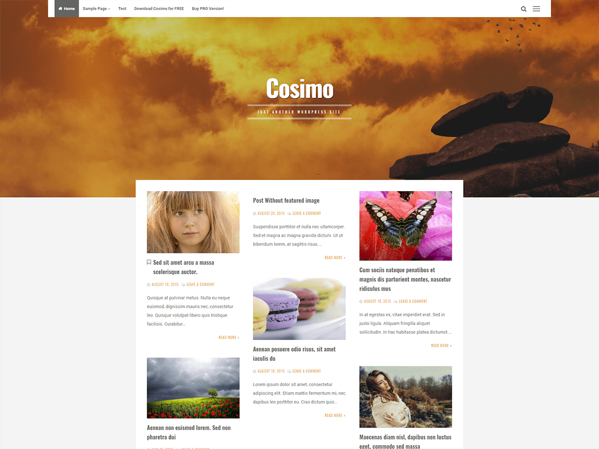 Cosimo Download Free Wordpress Theme 2