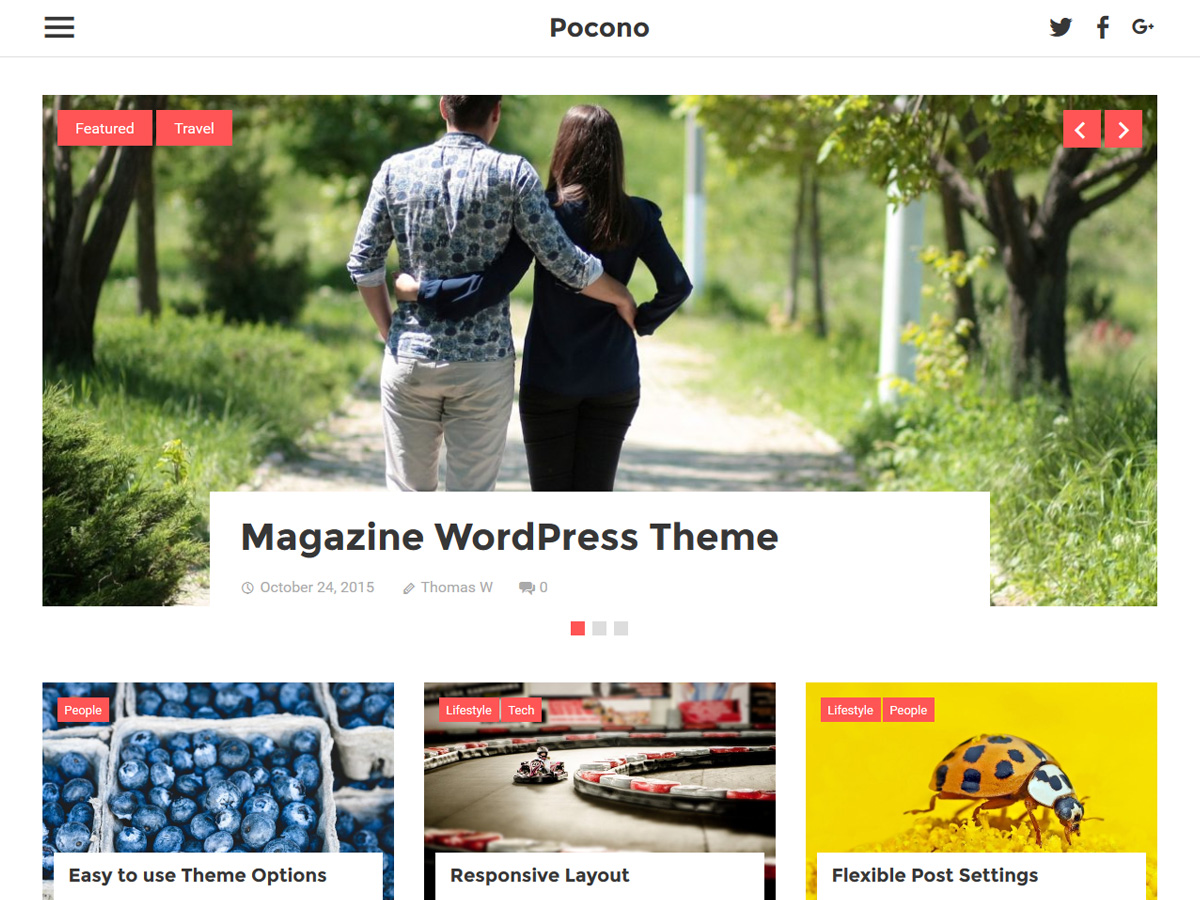 Pocono Download Free Wordpress Theme 1