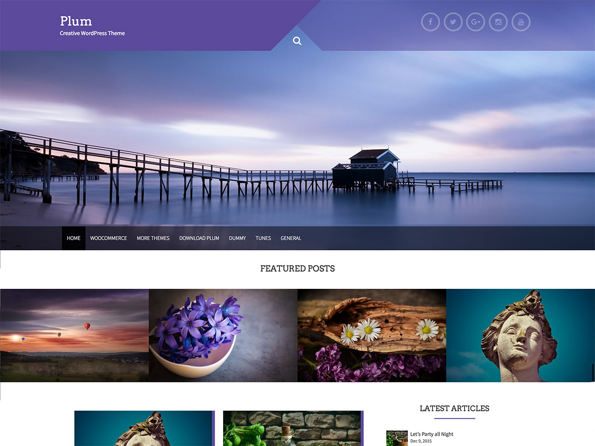 Plum Download Free Wordpress Theme 2