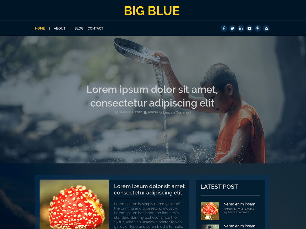 Big Blue Download Free Wordpress Theme 5
