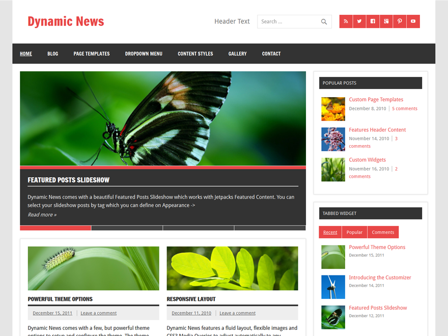 Dynamic News Lite Download Free Wordpress Theme 2