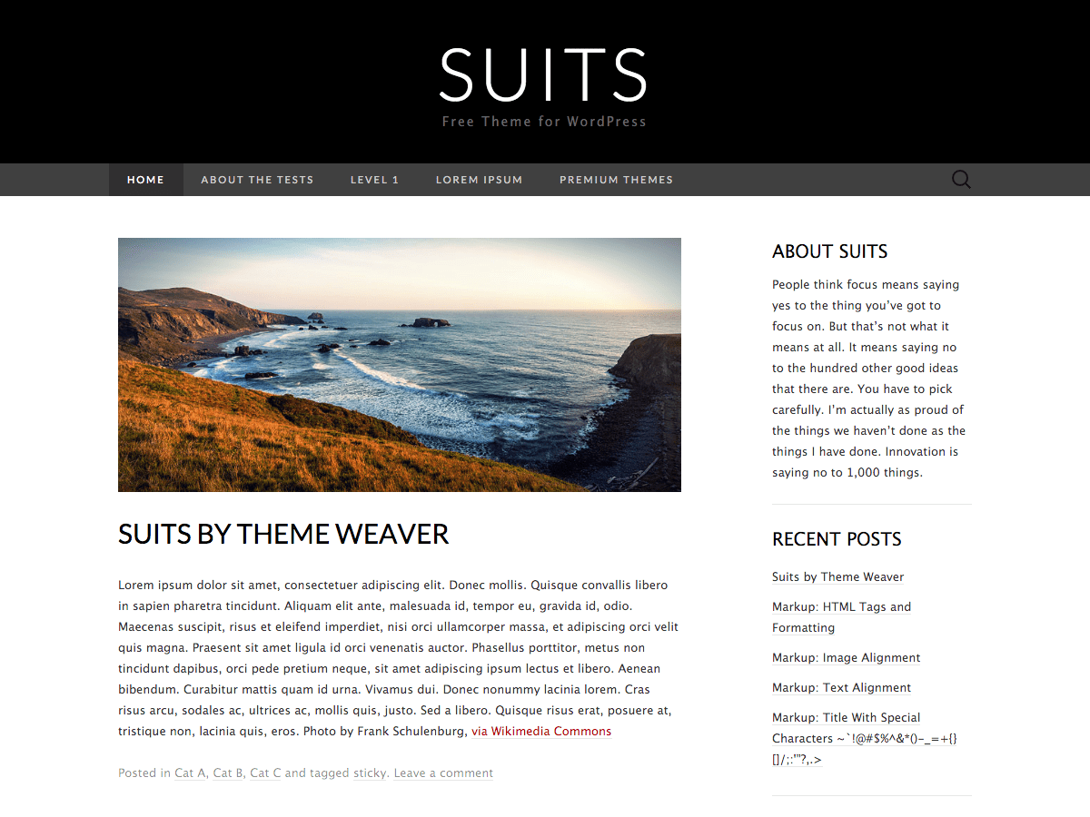 Suits Download Free Wordpress Theme 2